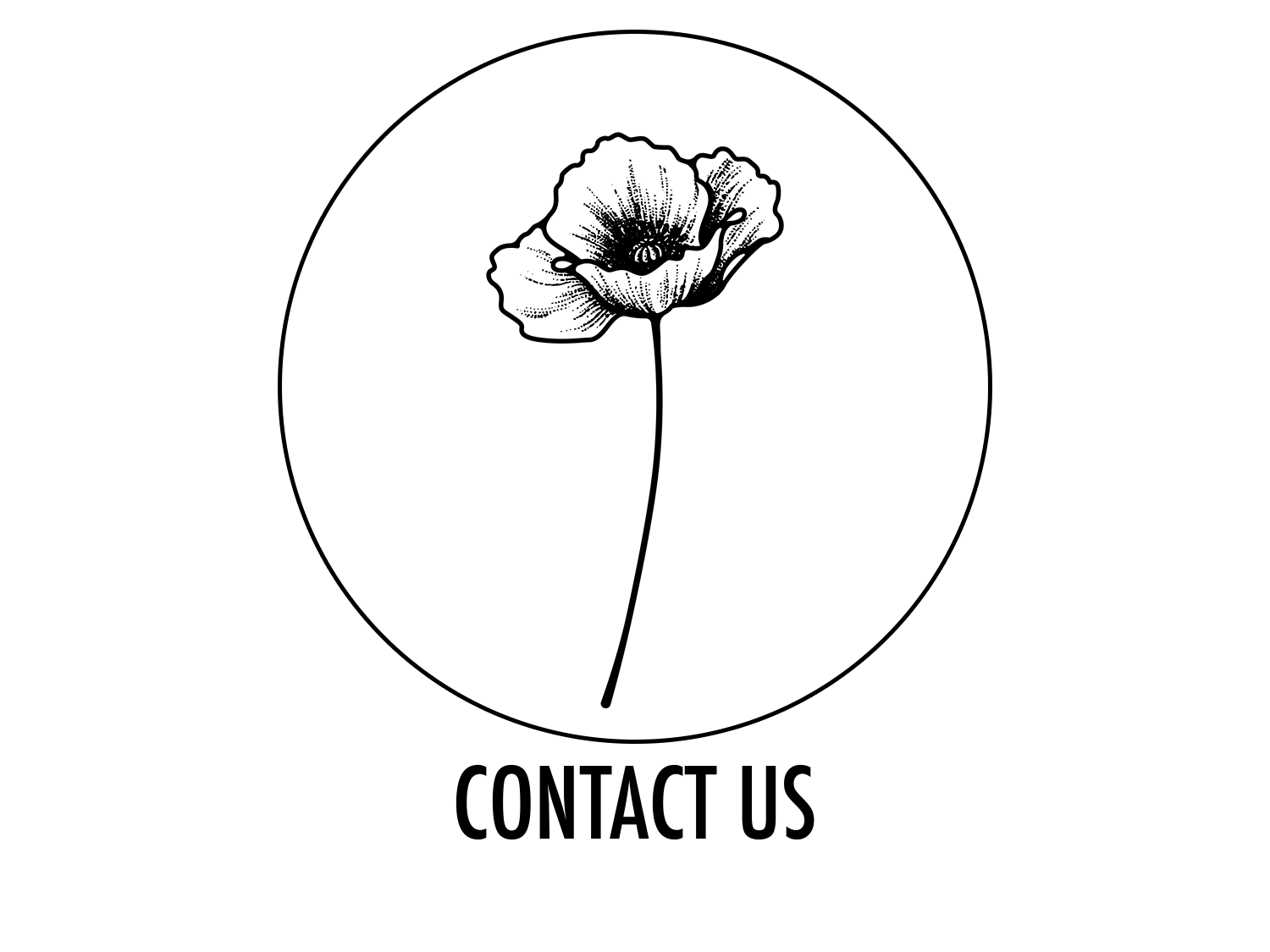 the-poppyfield-agency-contact-us.png