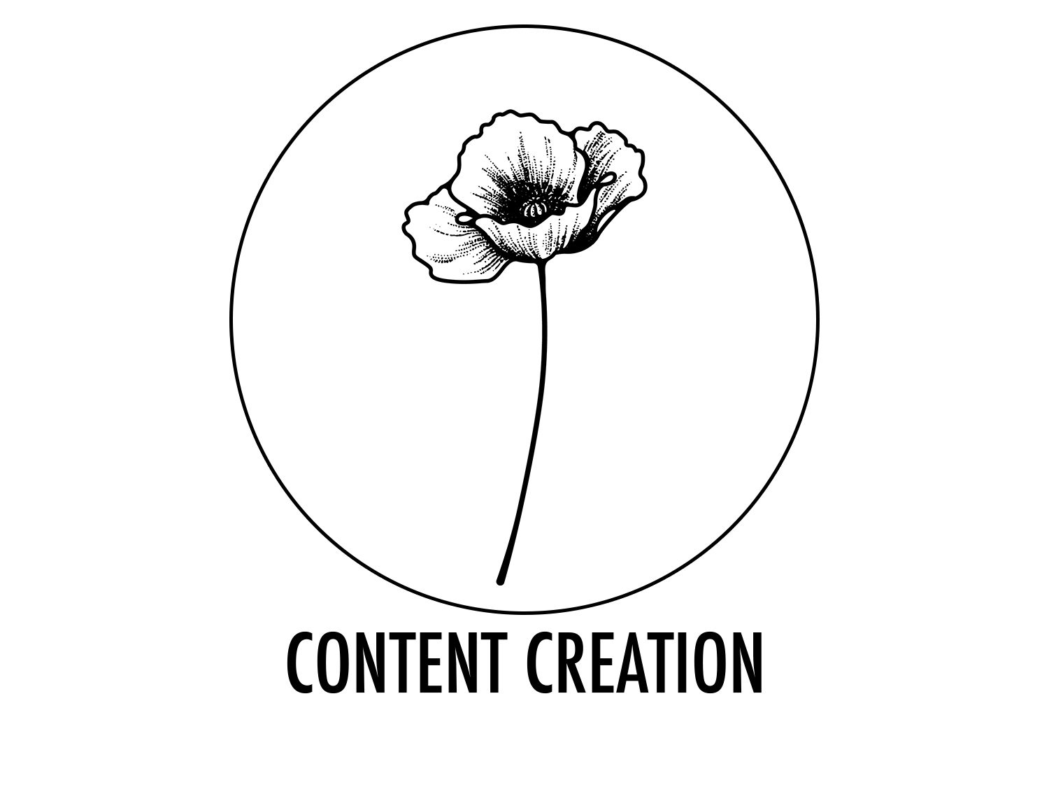 The Poppyfield Agency proudly offers services for creating the exact media you need to reflect your true vision.