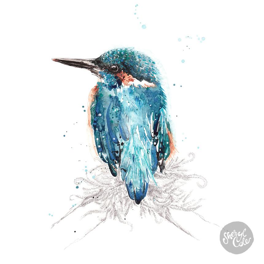 SherylCole_AzureKingfisher860.jpg