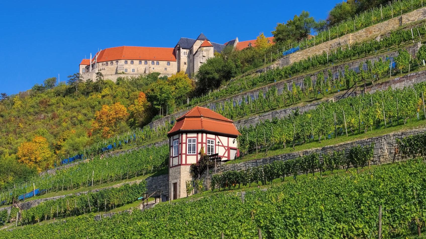 Weinanbaugebiet SAALE UNSTRUT