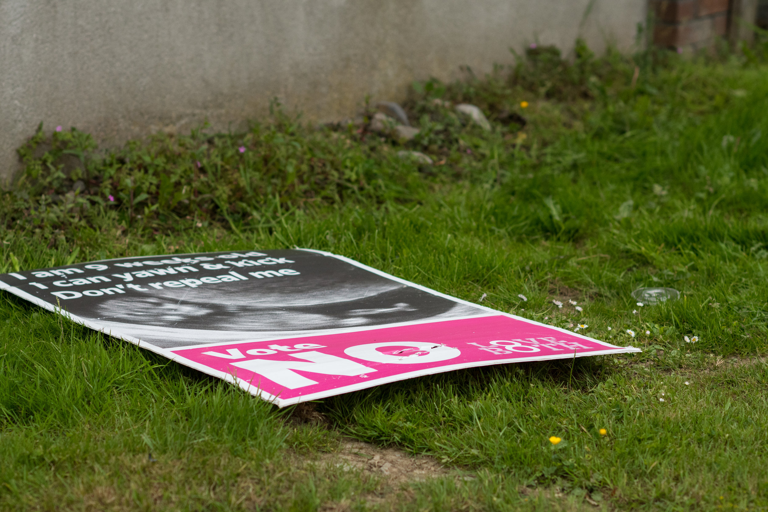 no-campaign-poster-ripped-down.jpg