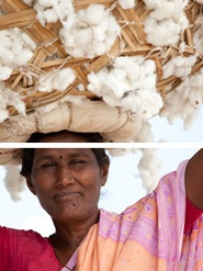 RAJLAKSHMI COTTON MILLS, India - Based in Kolkata, India, Rajlakshmi Cotton Mills is a dedicated organic and Fairtrade cotton manufacturer with a vertical supply chain of production – from farmer to finished product. A pioneer in organic garment manufacturing in India, RCM deals only in organic and Fairtrade cotton, including mixes of organic cotton with other eco-fibres.