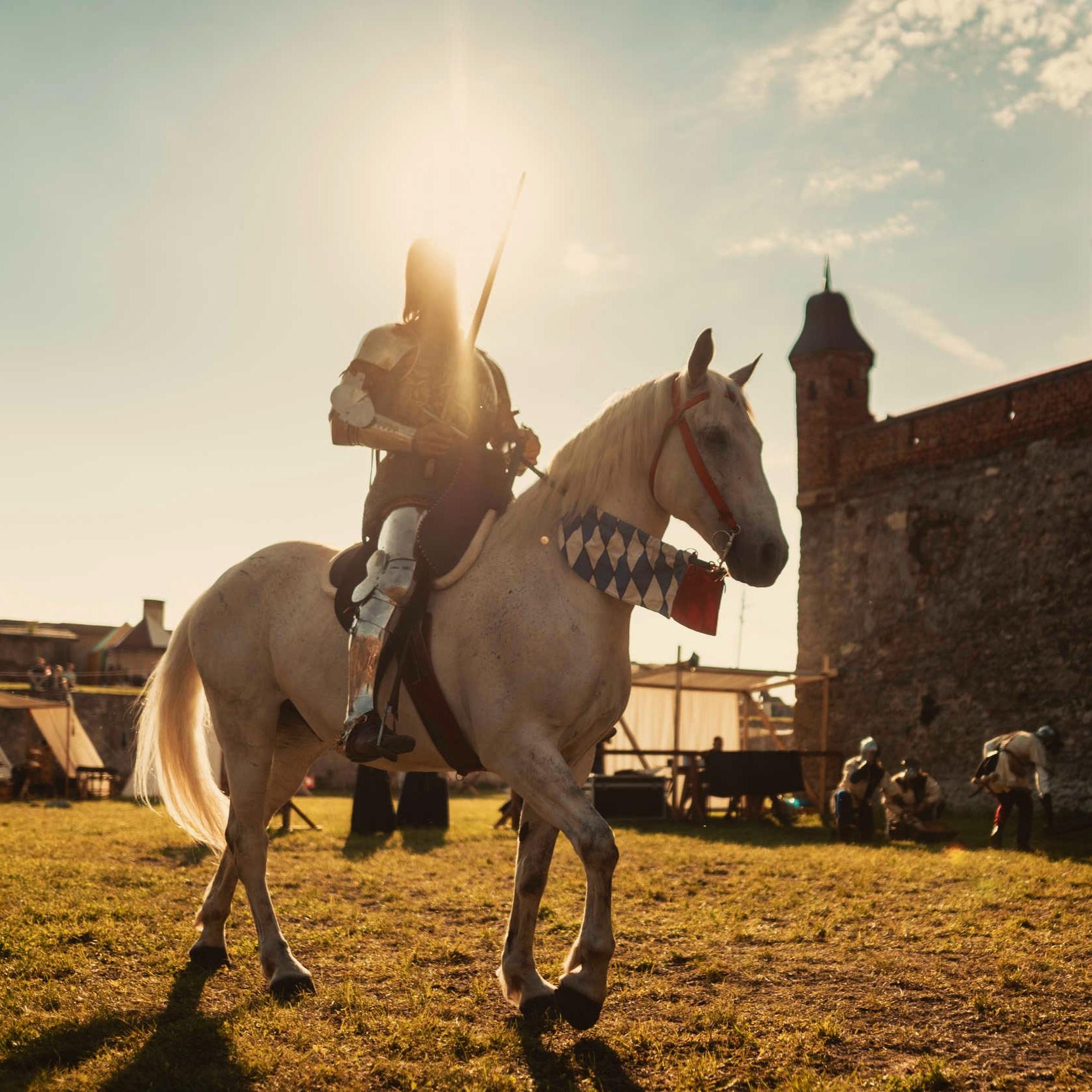 Vystúpenia s koňmi - Kone sú našou veľkou pýchou. Zažite famózny rytiersky turnaj na koňoch, dobový sprievod s kráľovskou jazdou a ďalšie.