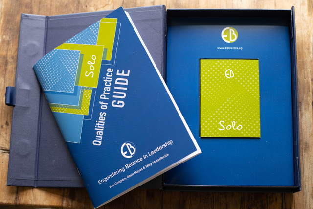 AVAILABLE NOW - Solo Qualities of Practice
