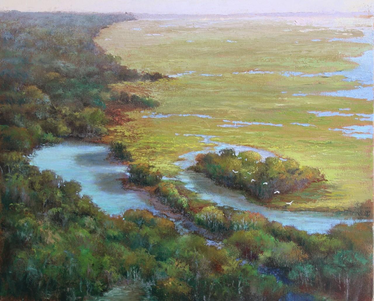 2017CS - Burnett - Marsh Overview - As Seen From Above.jpg