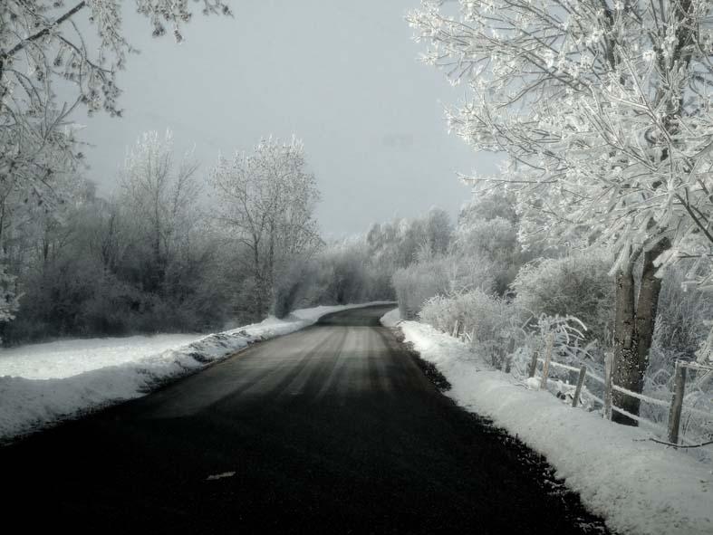 Je regarde le paysage blanc et je continue à penser à toi...2019 Copyright © Mayte Vieta.jpg