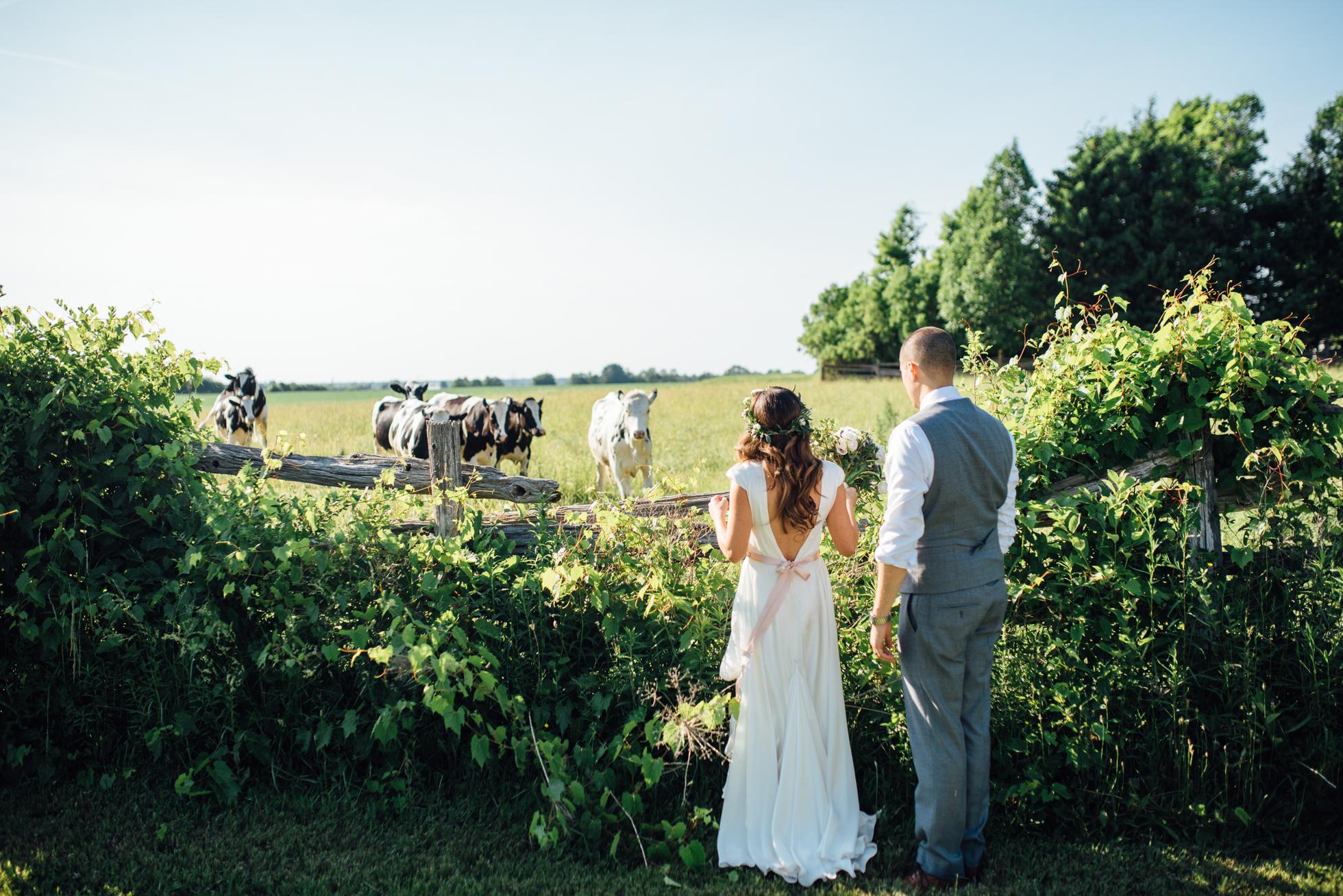 Downswell-Barn-Wedding-Photography-80.jpg
