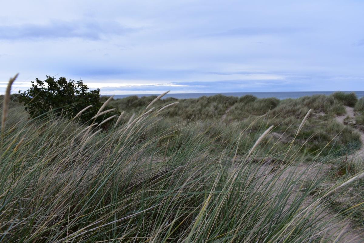Northumberland 2.jpg