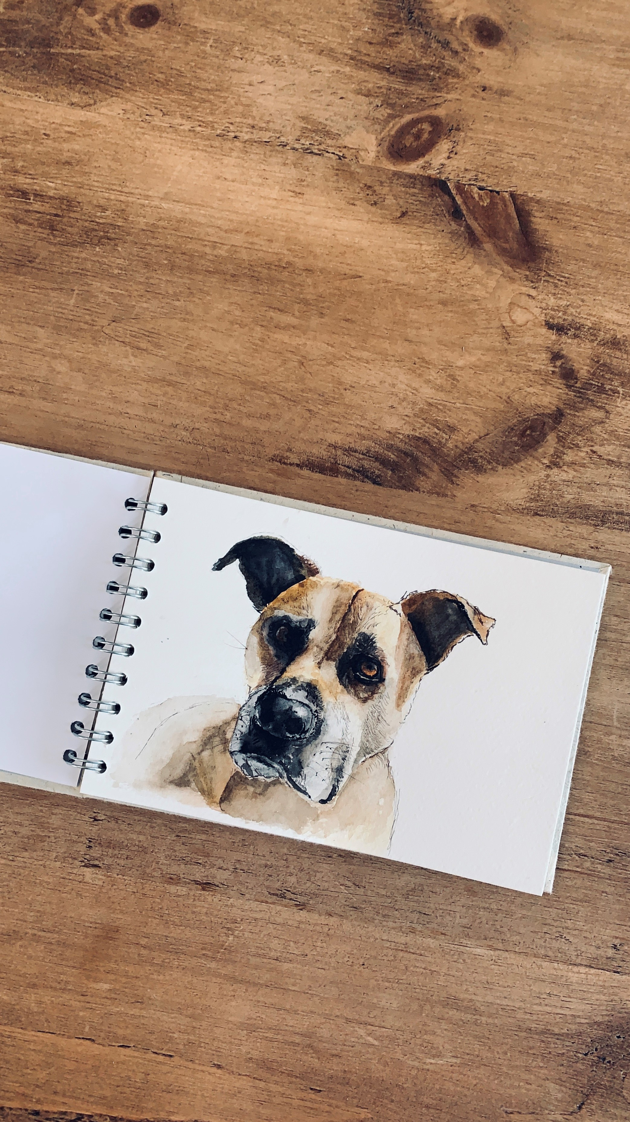 Watercolour Painting Dog Commisionjpg.jpg