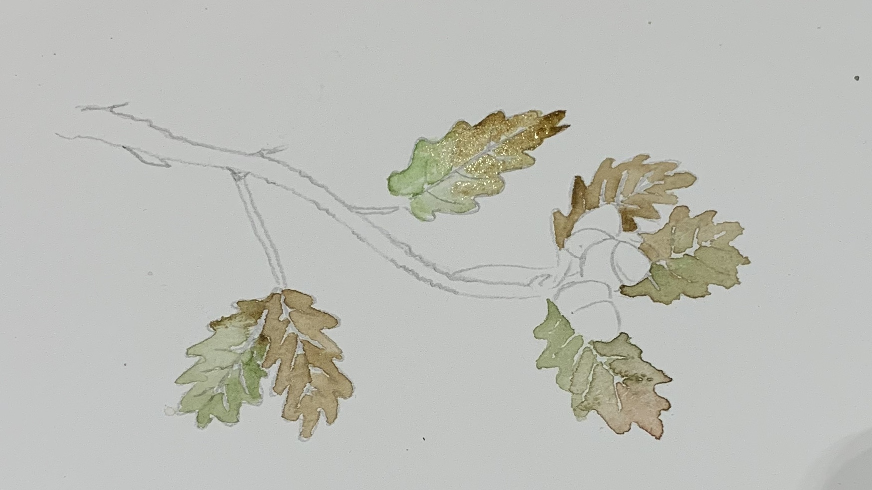 8. Repeat this step for every leaf remembering to leave the pencil lines untouched. I left out the green on two leaves to make it more autumnal.