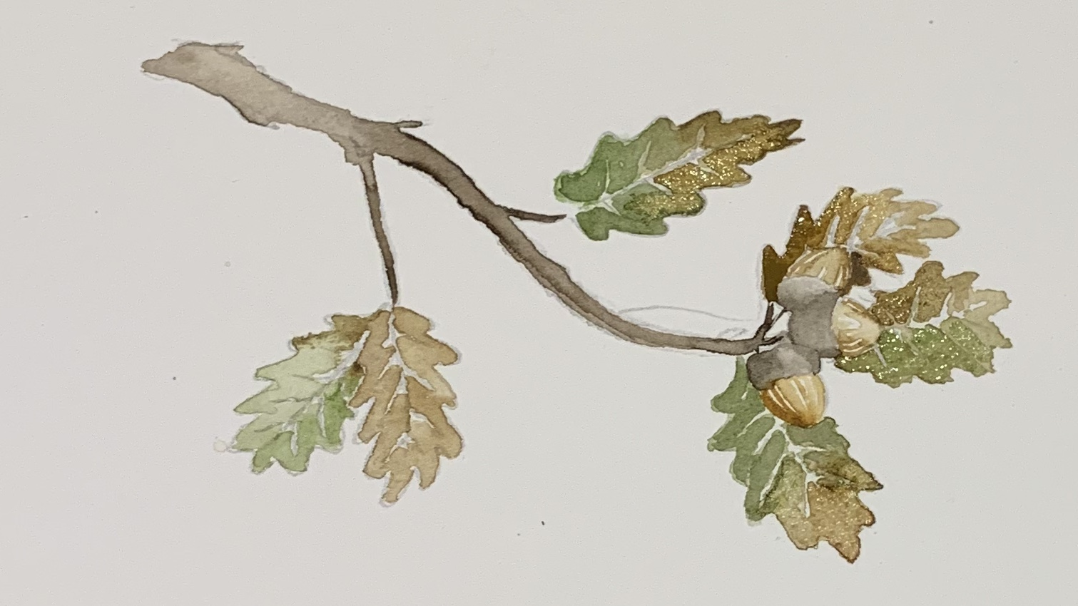12. Once the painting is completely dry, repeat steps 6 & 7 by going over all the leaves a second time. Add a darker mix of black and burnt umber to the underside of the branch and the acorns.
