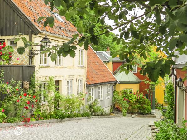 Oslo-Damstredet-(230).jpg