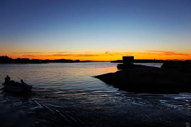 Bli med på hummerfiske på hvaler. Les vår hummer-spesial: visithvaler.no #hvaler #østfold #norge #norway #scandinavia #scandinavian #visitscandinavia #nordic #hummer #hummerfiske #fiske #visitnorway #nrk #nrkøstfold #yrbilder #godmorgennorge #lobster #tur #utno #visitoslofjorden #friluftsliv #oslofjorden #fjord #outdoors #archipelago #sea #fredrikstad #seafood #instagood