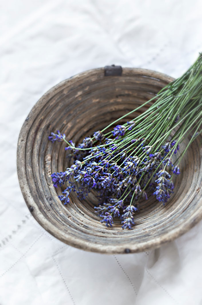 • Discover the benefits of herbs and essential oils