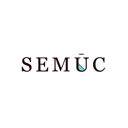 SEMUC-PORT.png