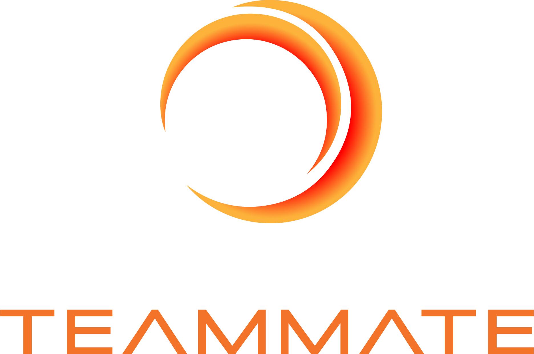 TEAM MATE logo.jpg