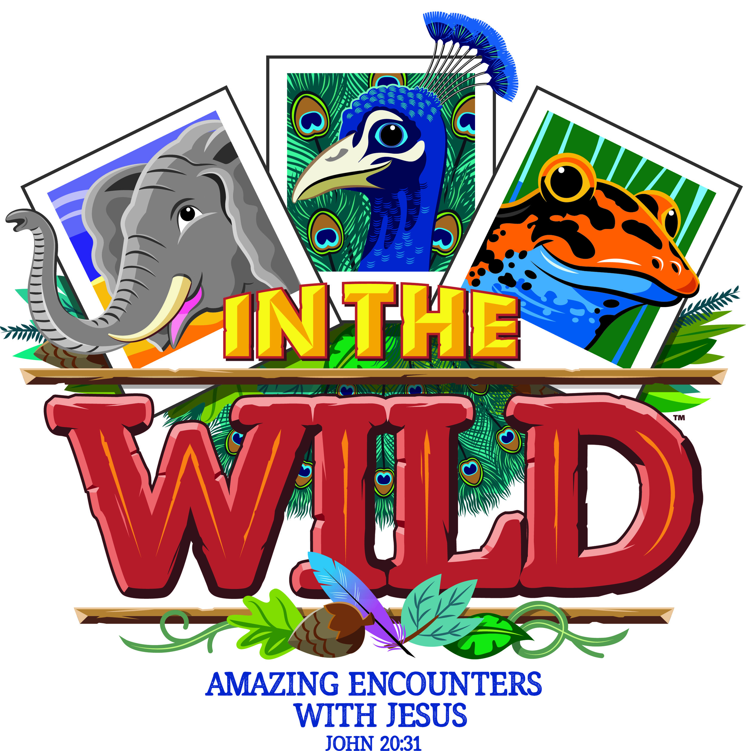 In the Wild VBS 7 2019.jpg