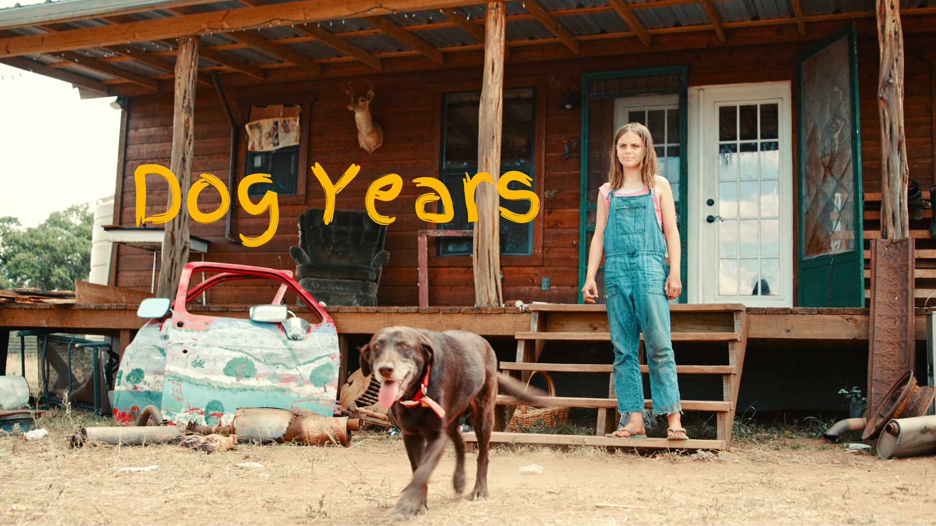 Dog Years wide 16x9.png