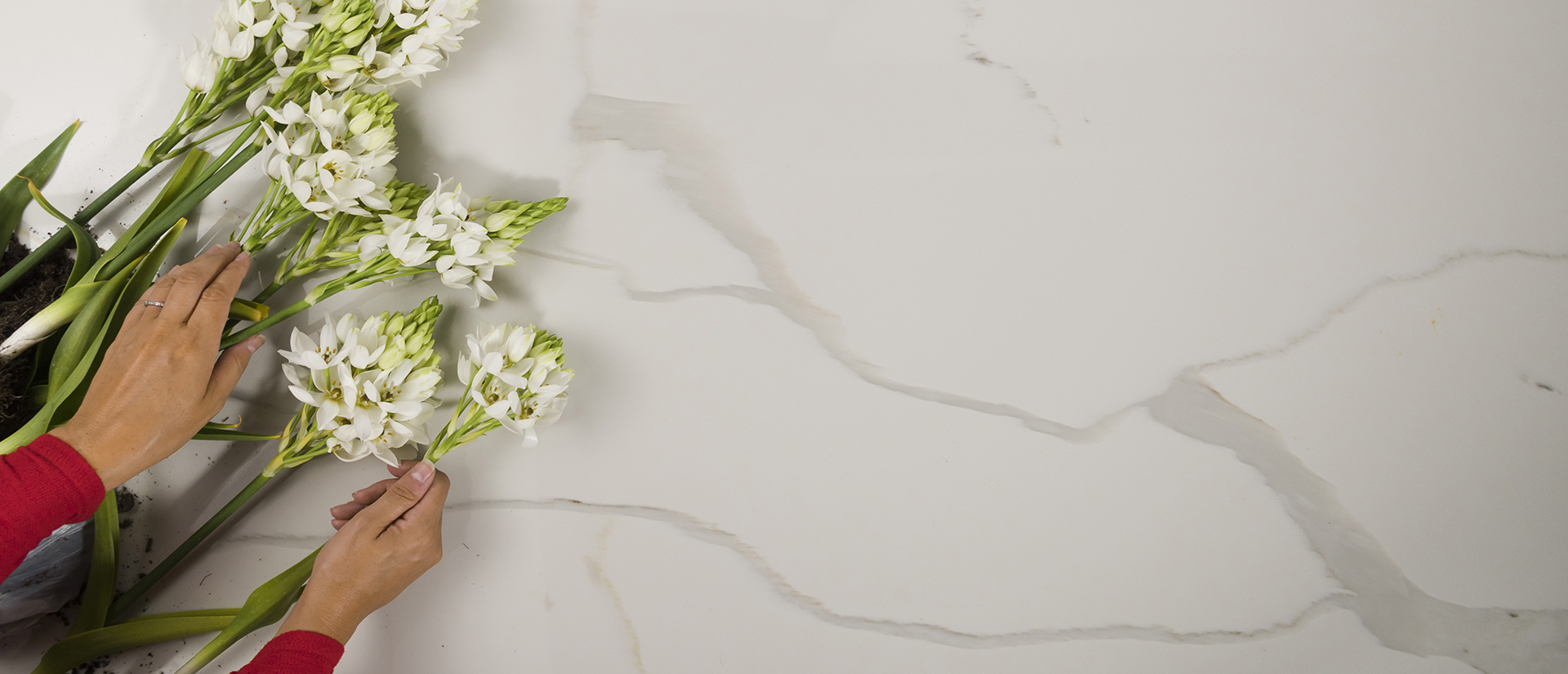Calacatta Gold  quartz countertop