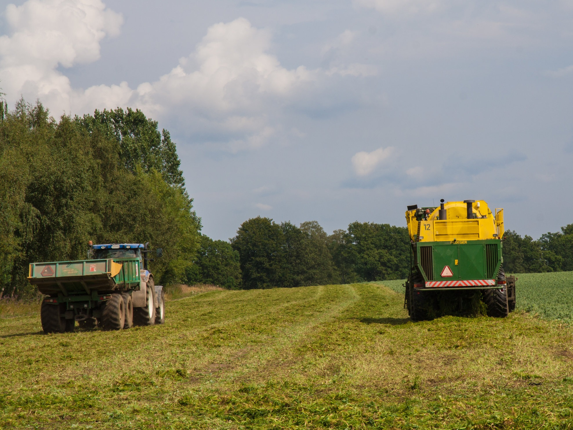 Småskaligt jordbruk i samarbete med granngårdar