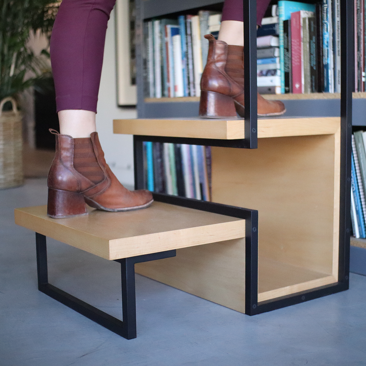 Stepladder Photos 2-Small.png