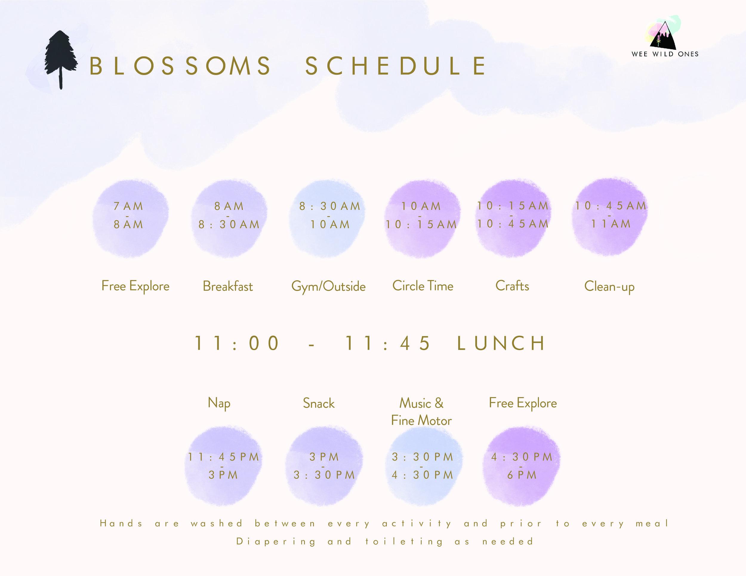 190312 Blossoms Schedule-01.jpg