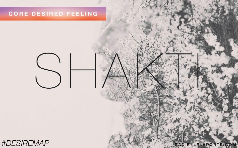 shakti_wall_image