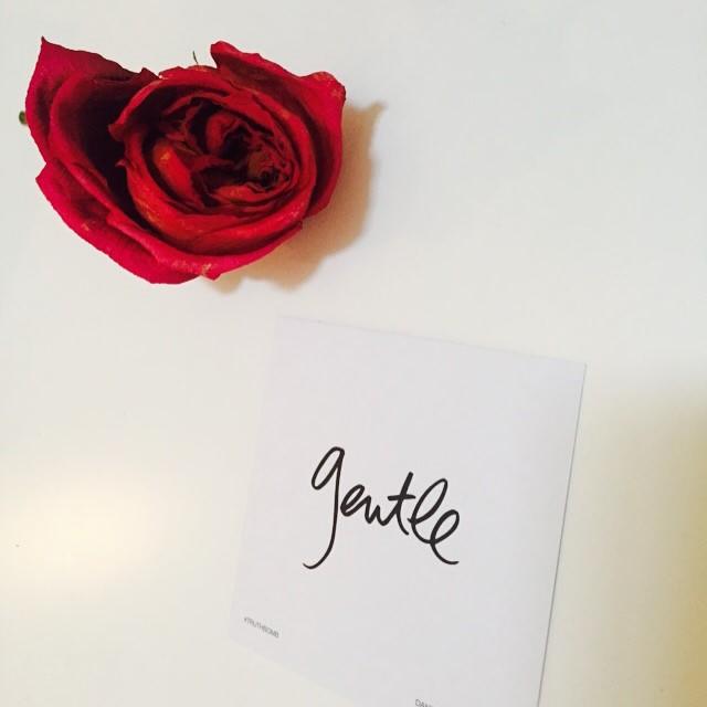Danielle-LaPorte-don't-punish-yourself.jpg