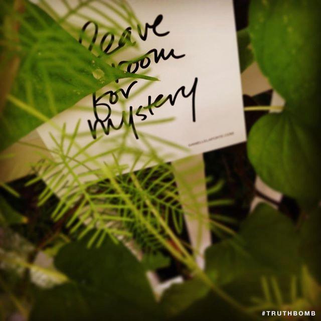 danielle-laporte-leave-room-for-mystery.jpg