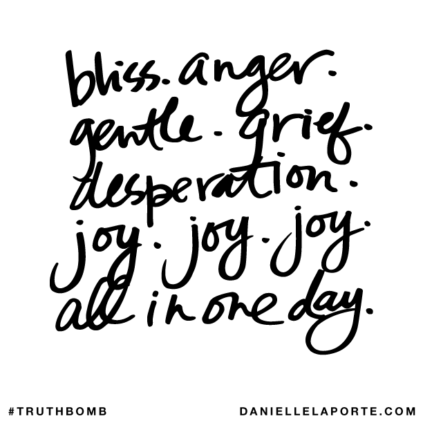 Bliss. Anger. Gentle. Grief. Desperation. Joy. Joy. Joy. All in one day..png
