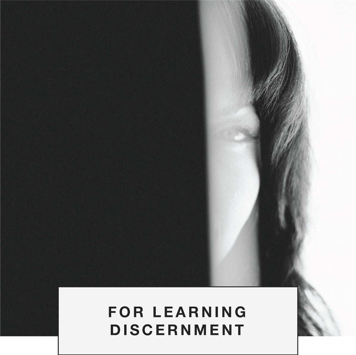 DLP.2019.DLPWebsite_List.Discernment2.png