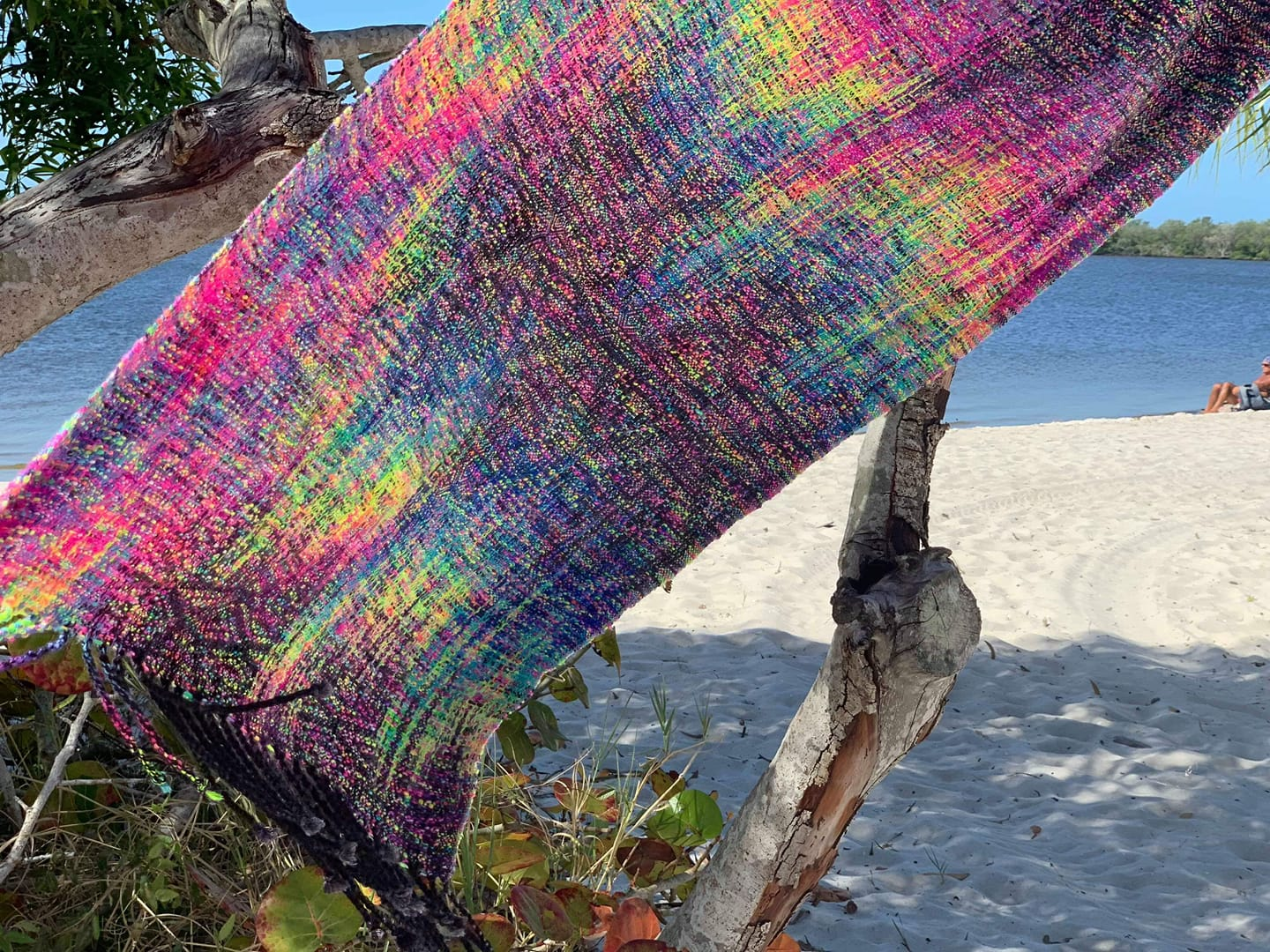 Photo ID: a beautiful rainbow painted ring sling is hanging on branch. In the background you can see the sand and the water of the ocean.
