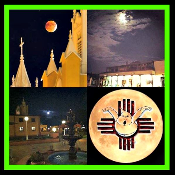 8PM NIGHTLY - 10PM MOONLIGHT TOURS HELD ON SELECT NIGHTS