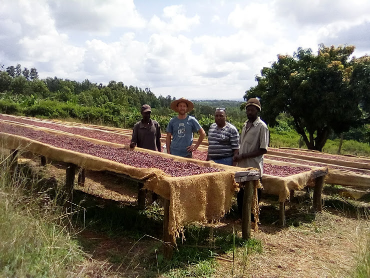 Mathew Mugo and his farm managers showing John their natural processed (dried in the fruit) crop at their Kirimara Farm.
