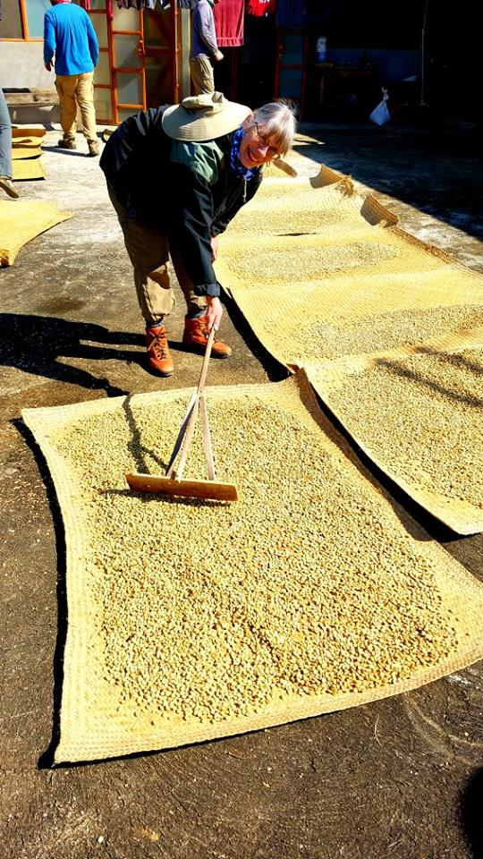 coffee drying before grinding off the husks.jpg