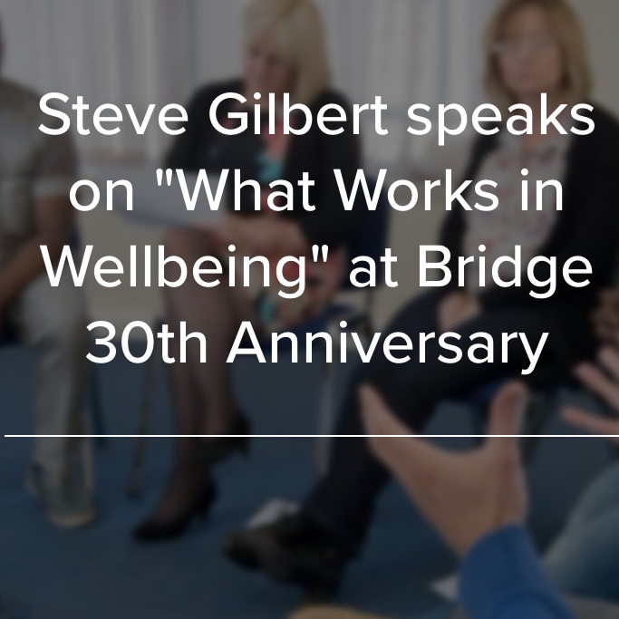 Steve speaks at Bridge 30th Anniversary - Bridge supports people with mental health problems by providing a 'bridge' between hospitals and the community. In February 2017 Bridge hosted its 30th anniversary conference, showcasing the latest thinking in mental health and wellbeing. They welcomed people who have benefited from their services to join with other experts, on what really works in supporting those with mental health problems become the best of themselves, and to discuss the future of mental health and wellbeing services.