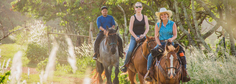 horse-ride-hawaii.jpg