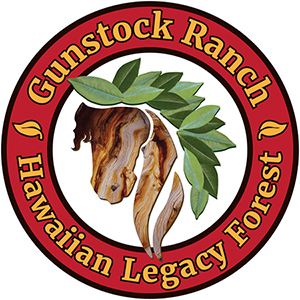 Gunstock+Ranch+simple+logo23++FINAL+(1).jpg