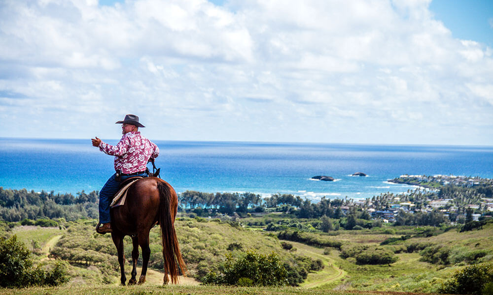 Participants in the Hawaiian Legacy Reforestation Initiative can visit forests on O'ahu and the Island of Hawai'i to take a horseback (above), UTV (below), or hiking tour.