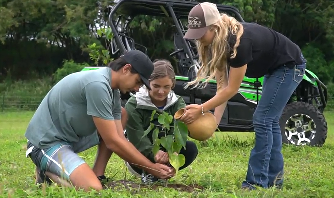 Planter's Adventure ,  Sponsor 4 Legacy Trees   Planting your own Hawaiian Legacy Tree is an experience that uniquely connects you to the land, ecosystems, and vegetation of Gunstock Ranch and the island of O'ahu. Plant and dedicate your Legacy Tree in our pristine forest, surrounded by the relaxing sounds of the natural world. Fun for the whole family!