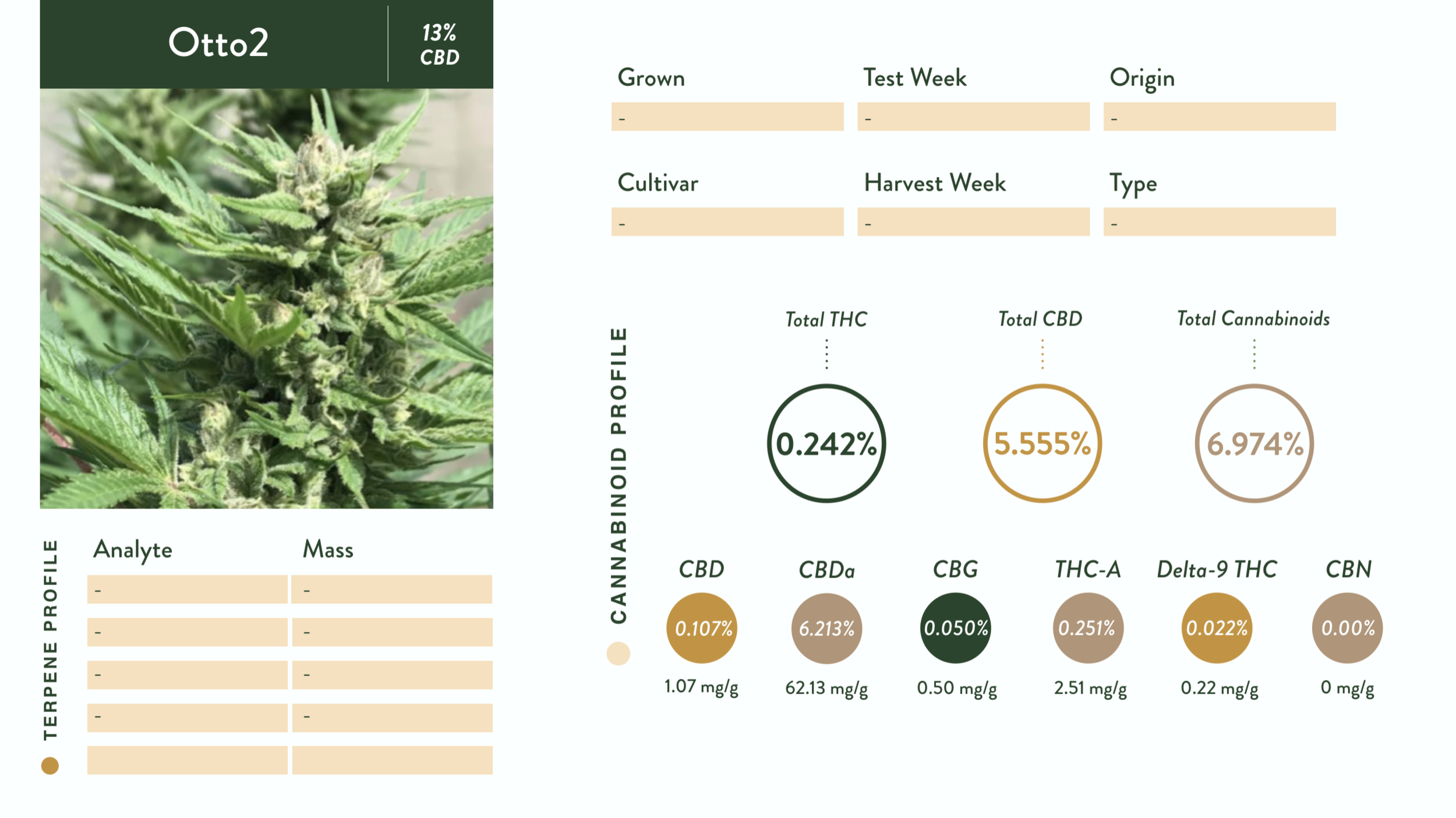 Strain Catalogue — Tennessee Grown