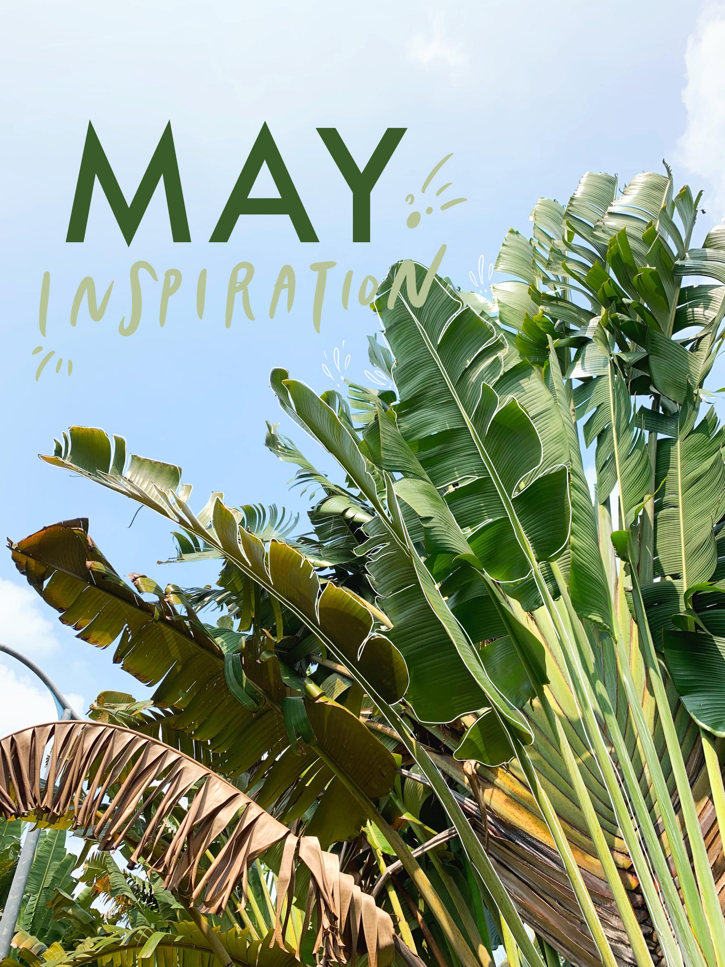 may inspiration