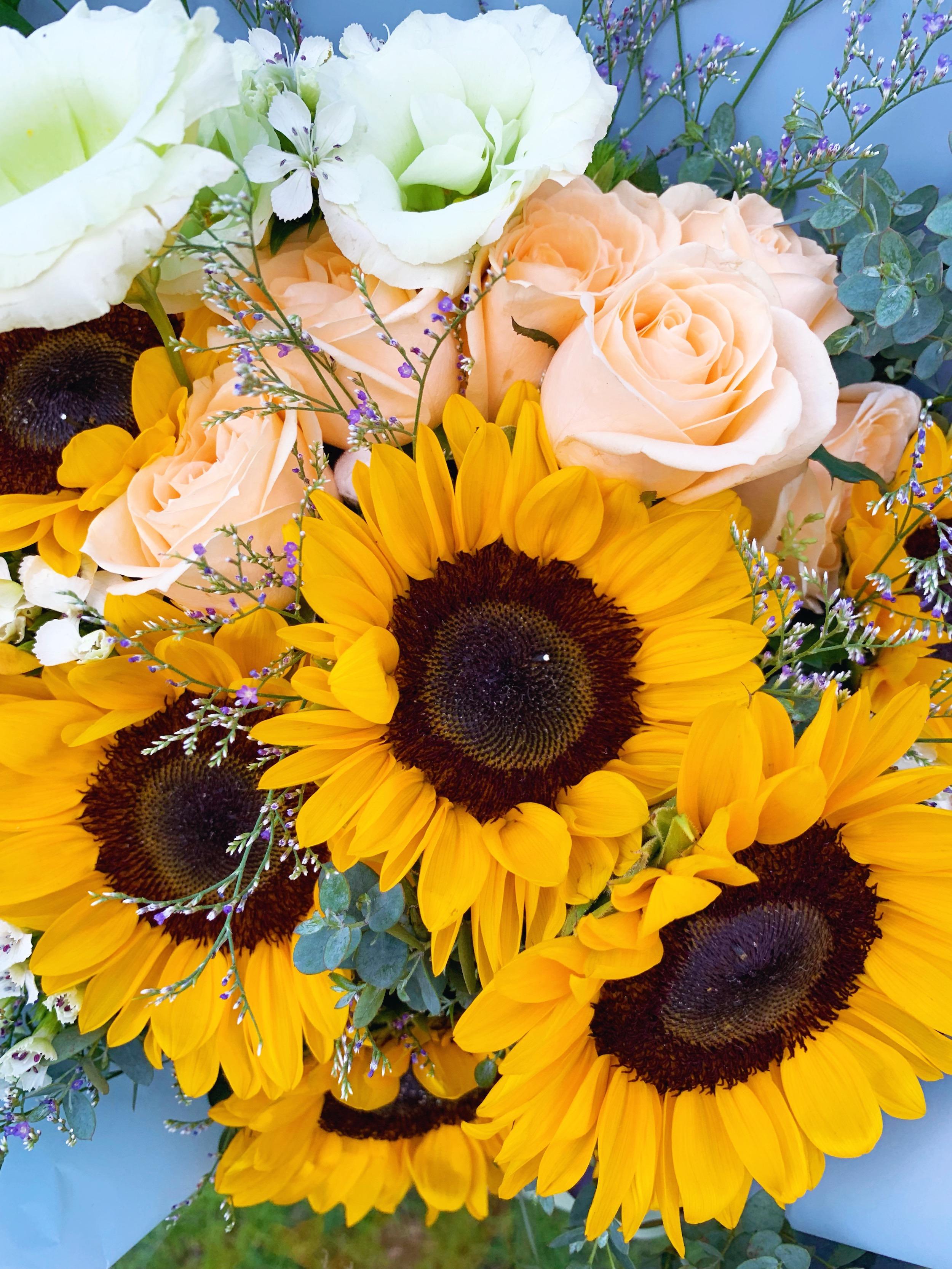 coffeescribbles sunflower