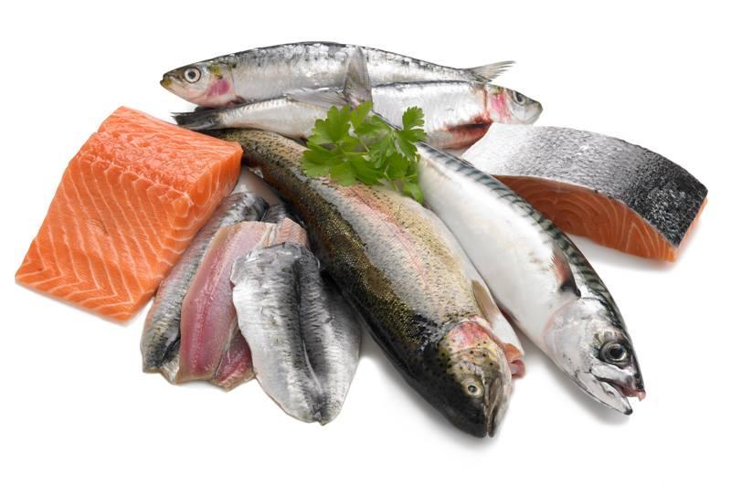 sardines.jpg