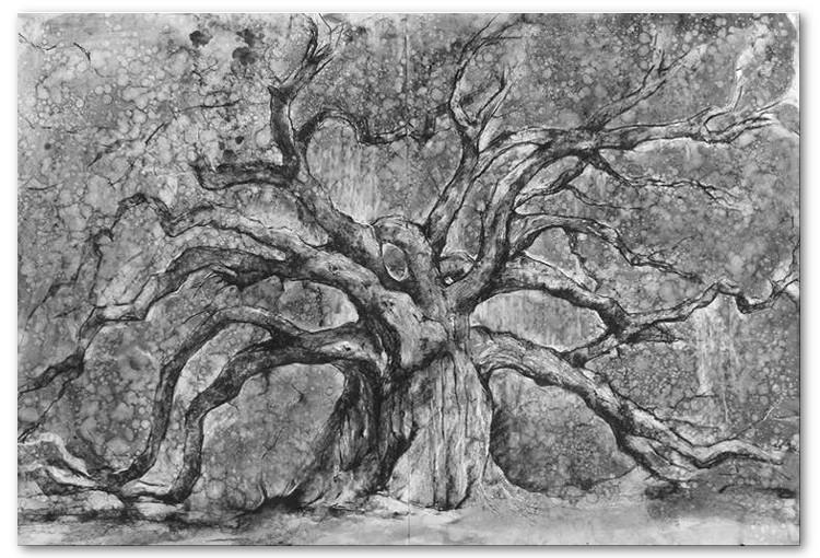 _treeoflifecharcoaldrawing-2.jpg