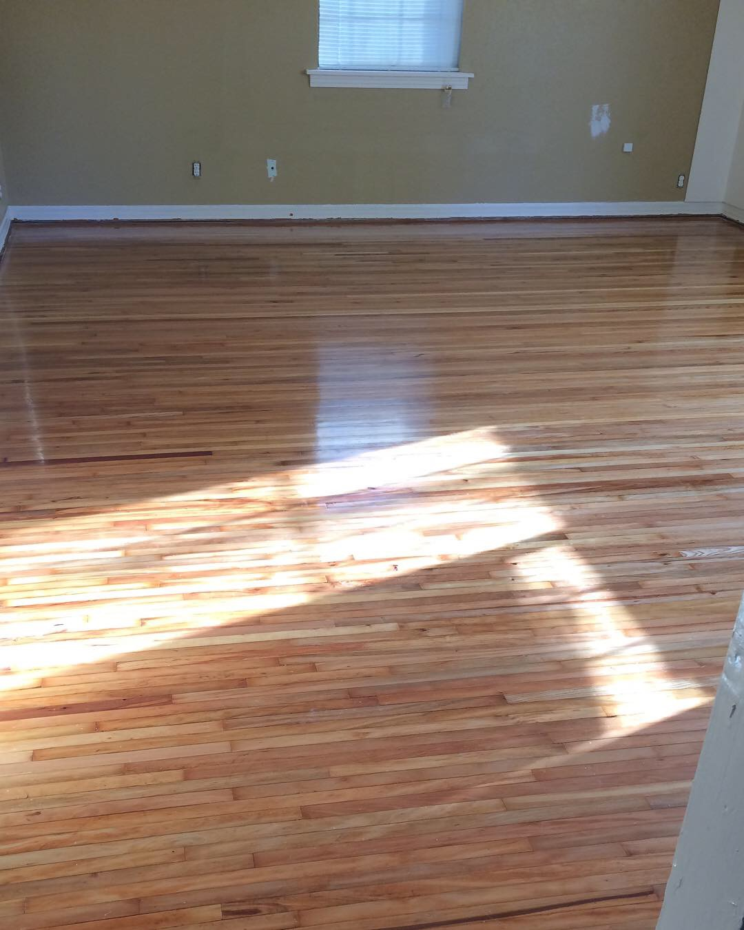 Looking south shortly after Jordan saved the floors. Aren't they beautiful?! I love the way the light streams in. We did not use any stain on the floors, but let them show their natural variance. The planks are very narrow, which is an old style of hardwood.