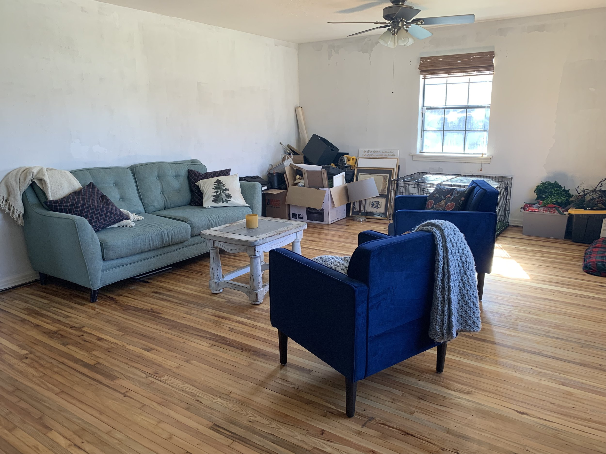Looking southeast from the front door now. Hi Home Shoppe! You're enough for what I need right now. Hi blue couch! You too are enough for what I need right now.