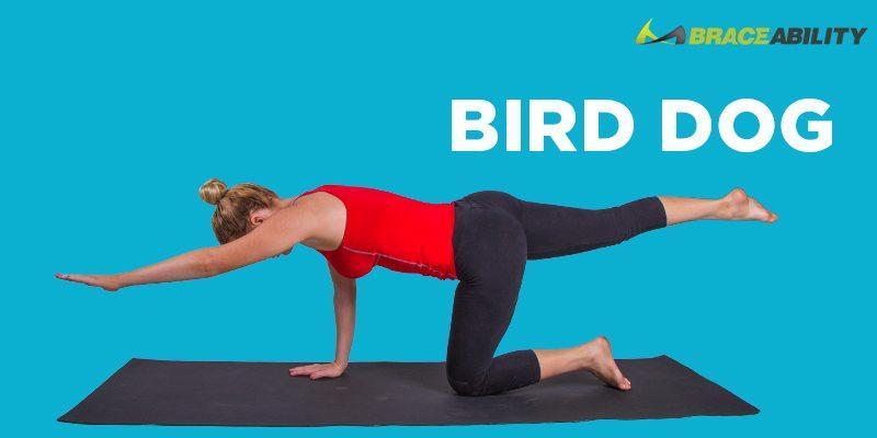 bird-dog-yoga-stretch-fo-sacroiliac-joint-pain.jpg