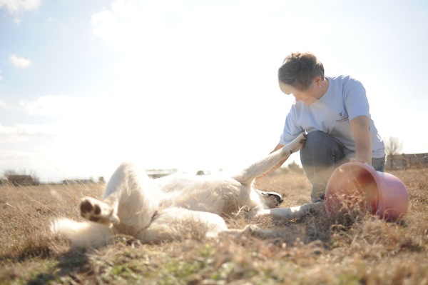 Lyn Tickling Dog.jpg