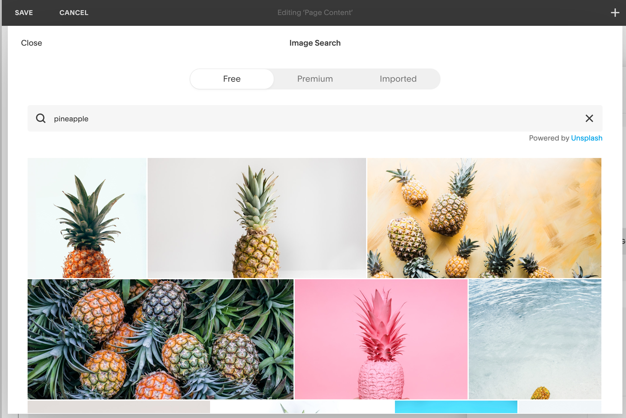 Unsplash free stock photography integration with Squarespace // How to Create a Brand Style Guide for Your Business // Five Design Co.